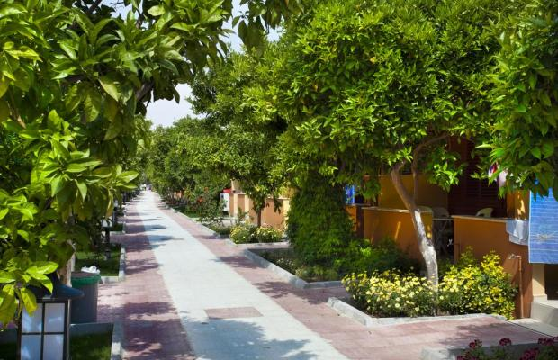 фото отеля Ozlem Garden Hotel изображение №9