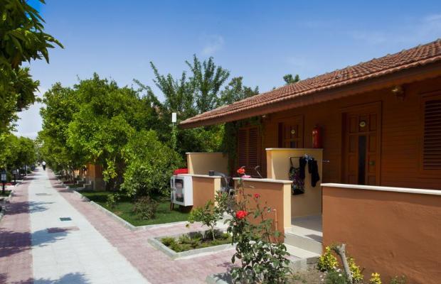 фотографии Ozlem Garden Hotel изображение №8