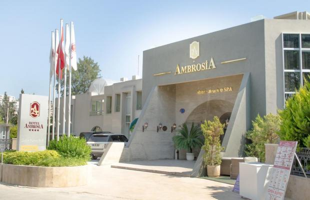фото отеля Ambrosia изображение №33