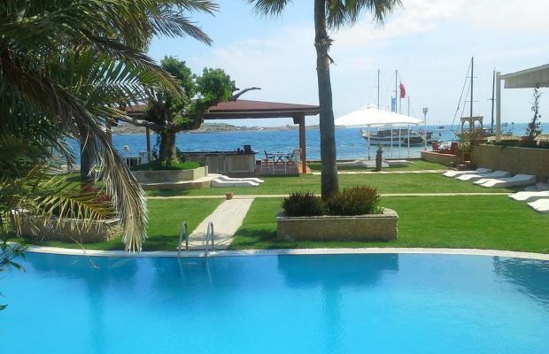 фотографии отеля Costa Luvi Hotel (ex. The Luvi Hotel; Club Oleal) изображение №11