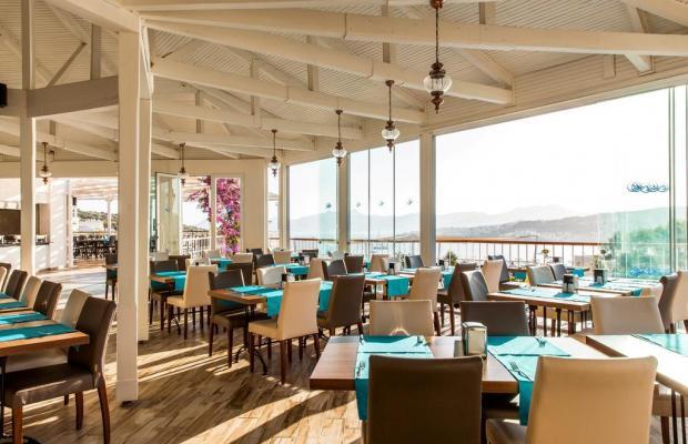 фотографии отеля Riva Bodrum Resort (ex. Art Bodrum Hotel & Club) изображение №23