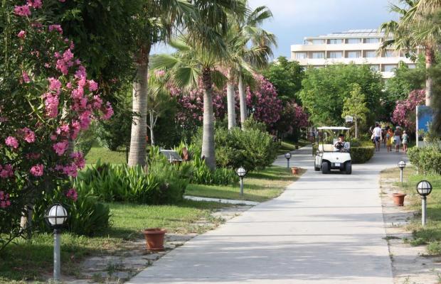 фотографии отеля Pemar Beach Resort изображение №27