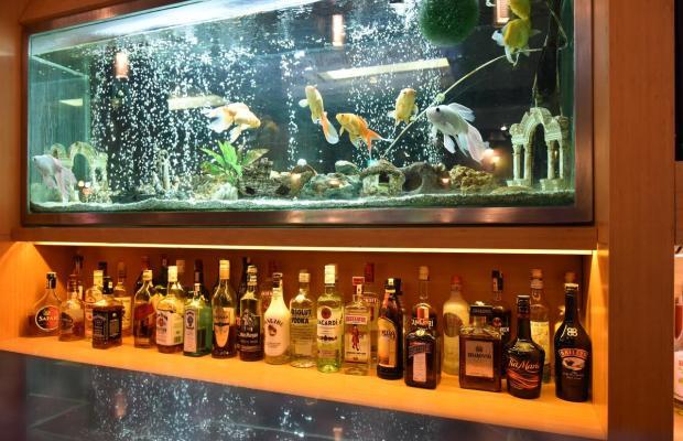 фотографии отеля Istankoy Hotel Bodrum изображение №11