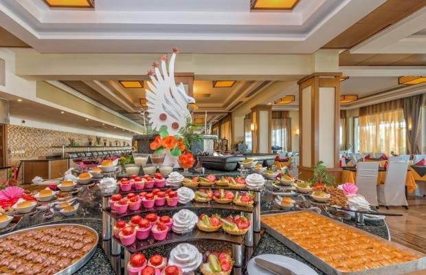 фотографии отеля Royal Atlantis Spa & Resort изображение №19