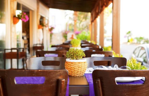 фотографии Sina Hotel Torba изображение №12