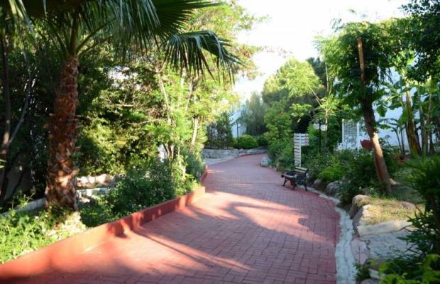 фотографии отеля Rexene Resort (ex. Barcello Rexene Resort) изображение №59