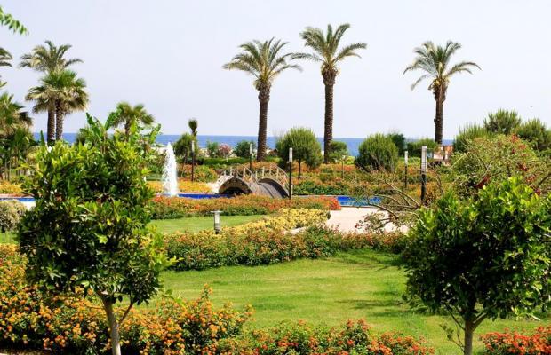 фотографии Miracle Resort изображение №24
