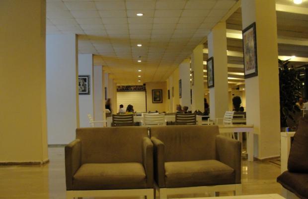 фото Pineta Club Hotel изображение №14