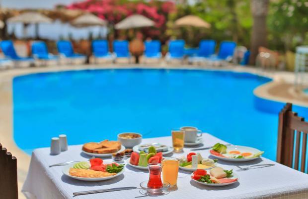 фотографии отеля Sunny Garden Nilufer изображение №43
