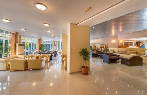 фотографии отеля Akti Beach Club Hotel изображение №23