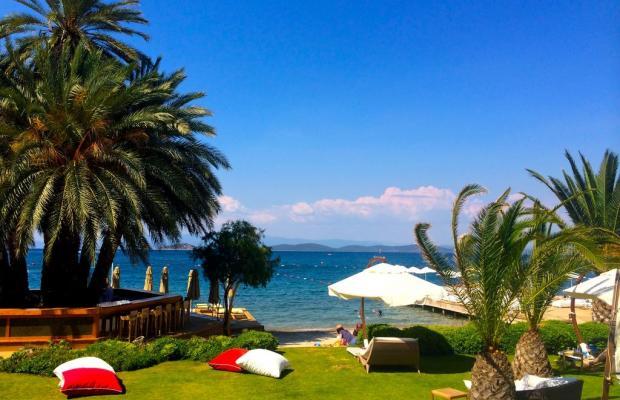 фото Casa Dell'Arte Luxury Family Resort (ex. Casa Dell'Arte Hotel of Arts & Leisure) изображение №6