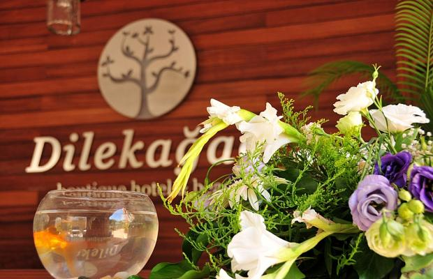 фото отеля Dilekagaci Boutique Hotel & Beach изображение №57