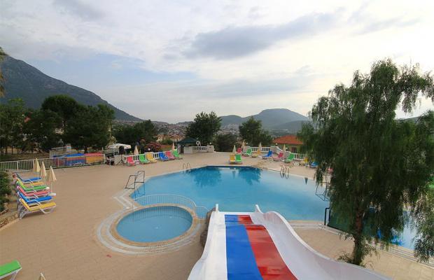 фото Daisy Garden Resort (ex. Violet Hotel; Big Rose) изображение №14