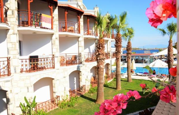 фотографии отеля Gumbet Beach Resort изображение №7