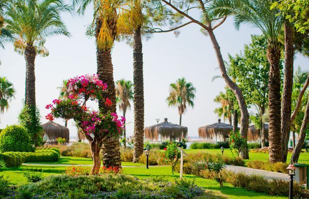 фотографии отеля Mirada Del Mar (ex. Sultan Saray) изображение №67