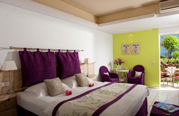 фотографии отеля Drossia Palms Hotel Studios  изображение №47