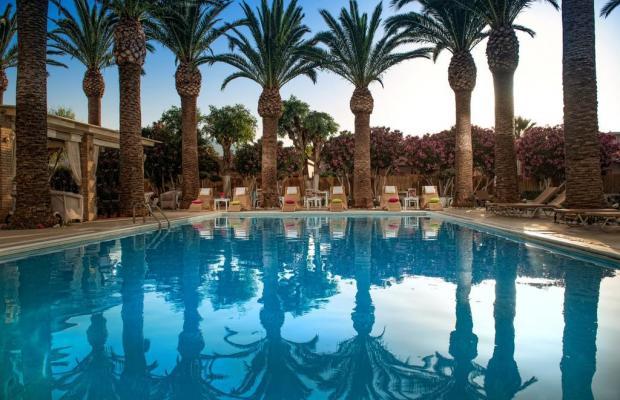 фотографии отеля Drossia Palms Hotel Studios  изображение №35