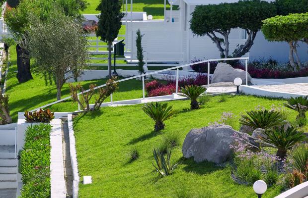 фотографии отеля Dimitra Beach Resort изображение №59