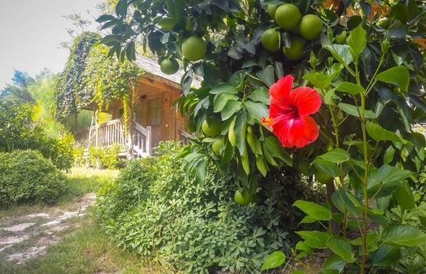 фотографии отеля Olympos Village Ecologic Activity Hotel изображение №7