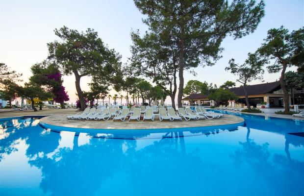 фотографии Diamonds Club Kemer (ех. Royal Palm Resort; Royal Resort) изображение №20