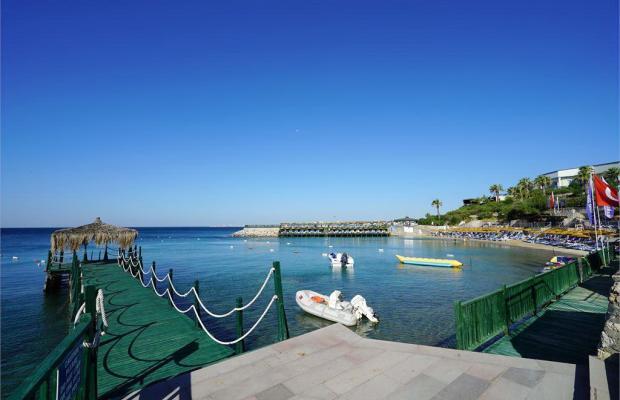 фотографии отеля Palm Wings Beach Resort изображение №3