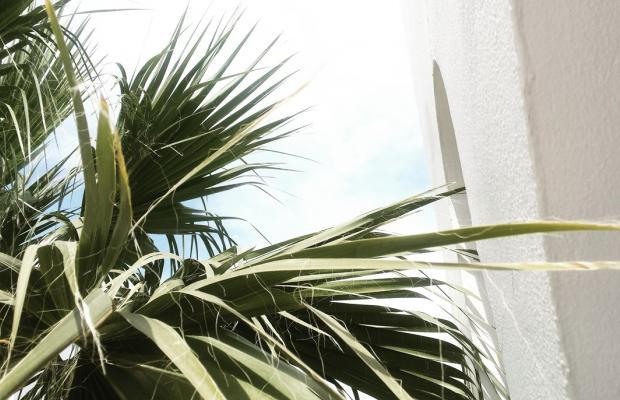 фотографии Residence Villas изображение №12