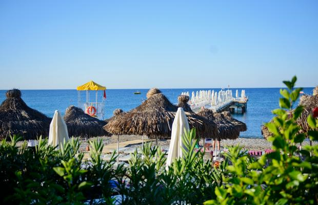 фотографии Q Premium Resort изображение №36