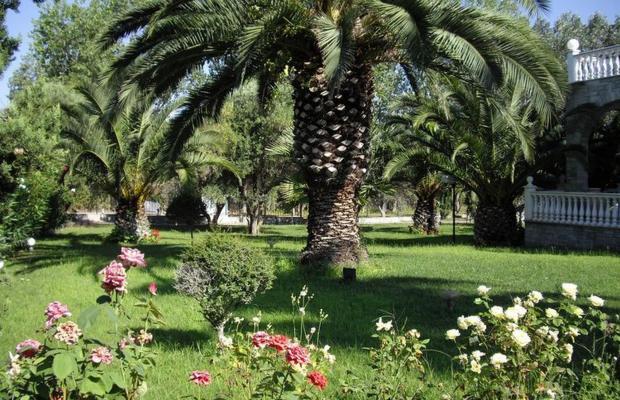 фотографии отеля Villa Kassandra изображение №63