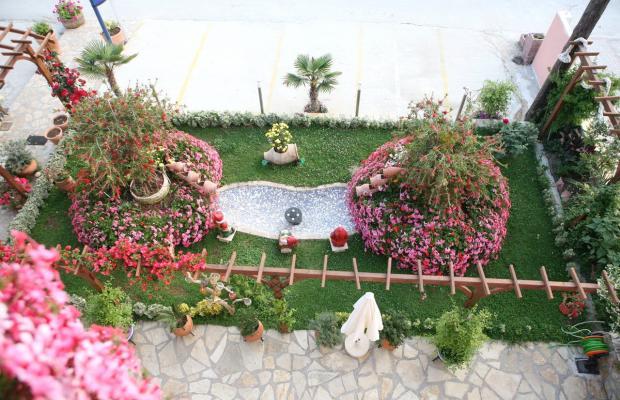 фото Korali House изображение №18