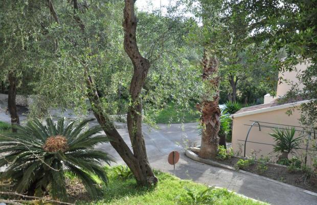 фотографии отеля Sun Village Resort (ex. Sun Apartments) изображение №19