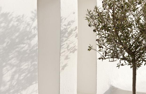 фотографии отеля Dreams Luxury Suites изображение №23
