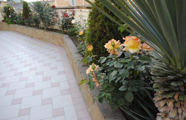 фото отеля Вилла Бельведер (Villa Belveder) изображение №37