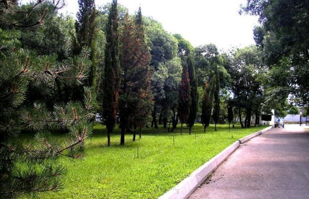 фото отеля Глория (Gloriya) изображение №13