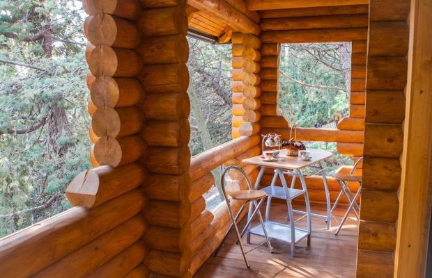 фото отеля Береговой (Beregovoj) изображение №13