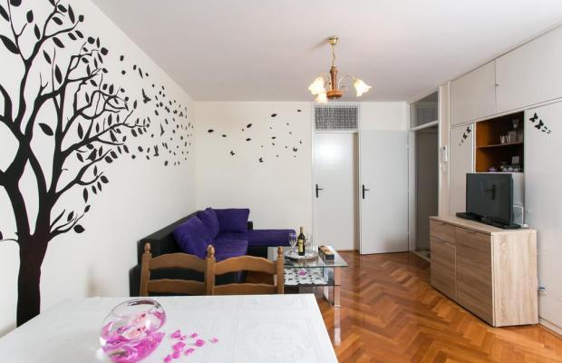 фотографии отеля Miletic Apartments изображение №15