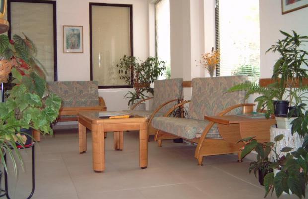 фотографии отеля Зонарита Отель (Sunarita Hotel) изображение №7
