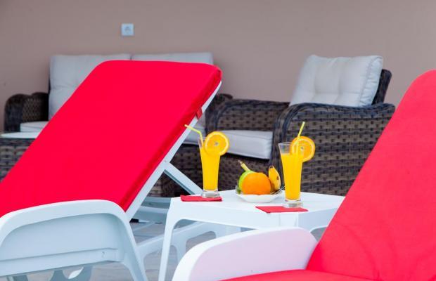 фотографии Apartments Pasha изображение №4