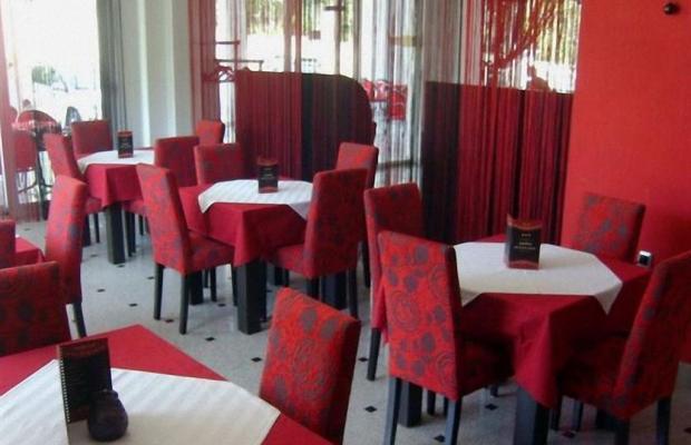 фотографии отеля Svetlana изображение №11