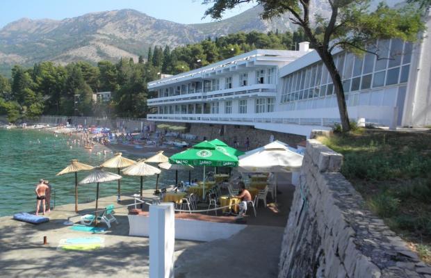 фото отеля Zlatna Obala изображение №5