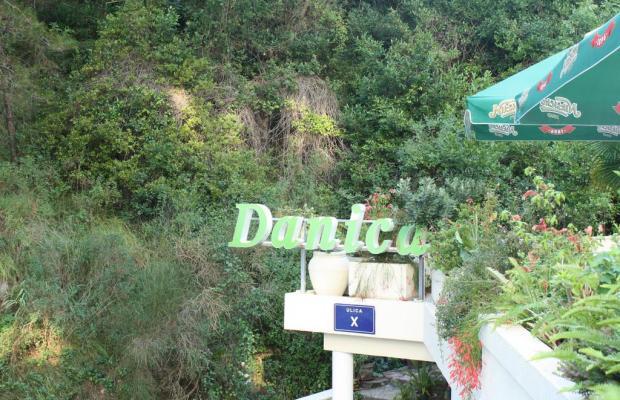 фото Danica изображение №34