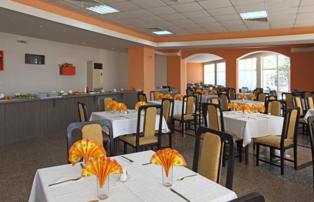 фото Аврора Отель и Вилла (Aurora Hotel and Villa) изображение №6