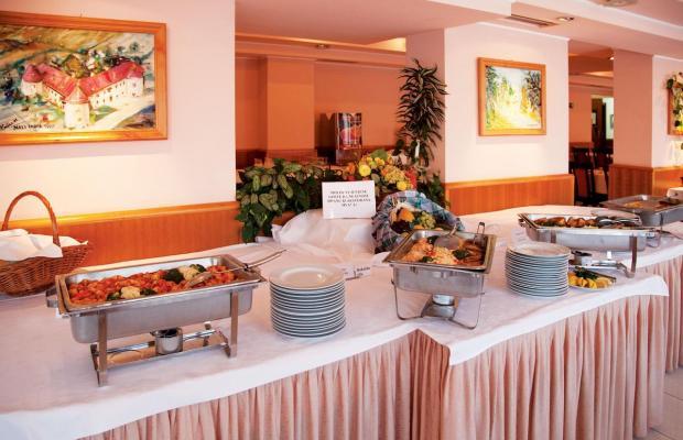 фото отеля Toplice изображение №17