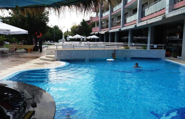 фотографии отеля Flamingo (Фламинго) изображение №3