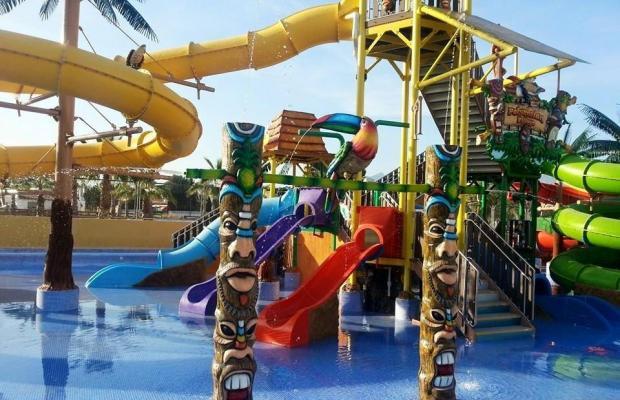 фотографии отеля Albir Garden Resort изображение №23