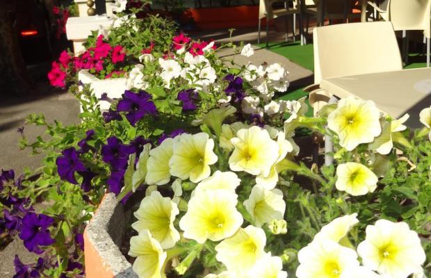 фото отеля Britta изображение №5
