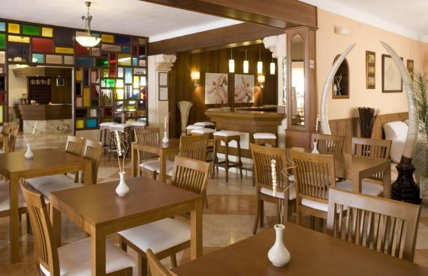 фото отеля Ses Punteles изображение №9