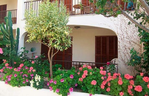 фото Delfin Casa Vida изображение №2