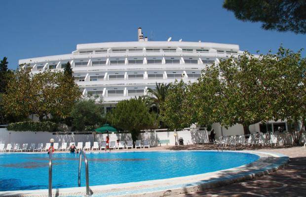 фотографии отеля Villaggio Club Altalia изображение №27