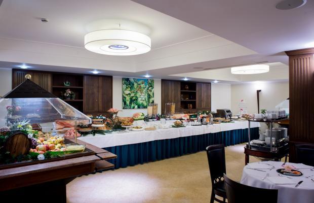 фотографии Artemis Hotel изображение №28