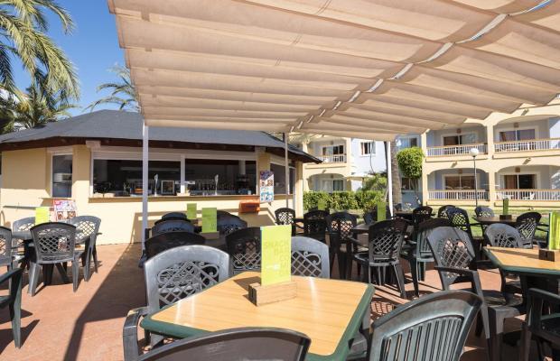 фотографии отеля Alcudia Garden изображение №35